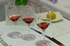130501 hodnotenie červených vín_3529