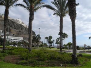 Gran Canaria 854
