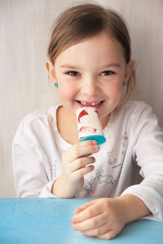 zmrzlina holcicka